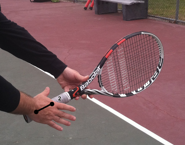 forehand_grips_continental_palm