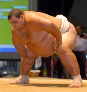 ready_position_sumo_wrestler