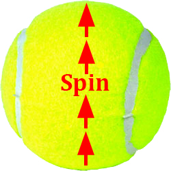 serve_introduction_spin