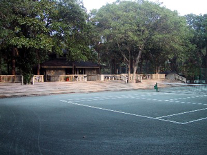 tennis_court_type_clay_green