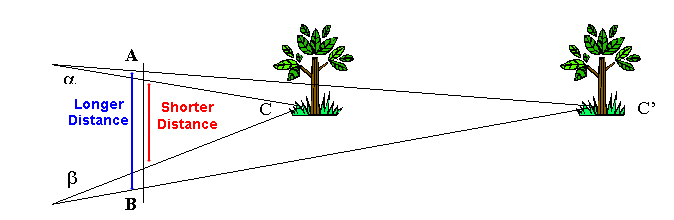 court_positioning_depth_trees_02